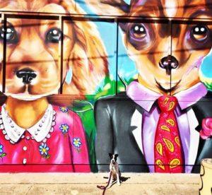 Personal Dog Walker in Houston, Texas